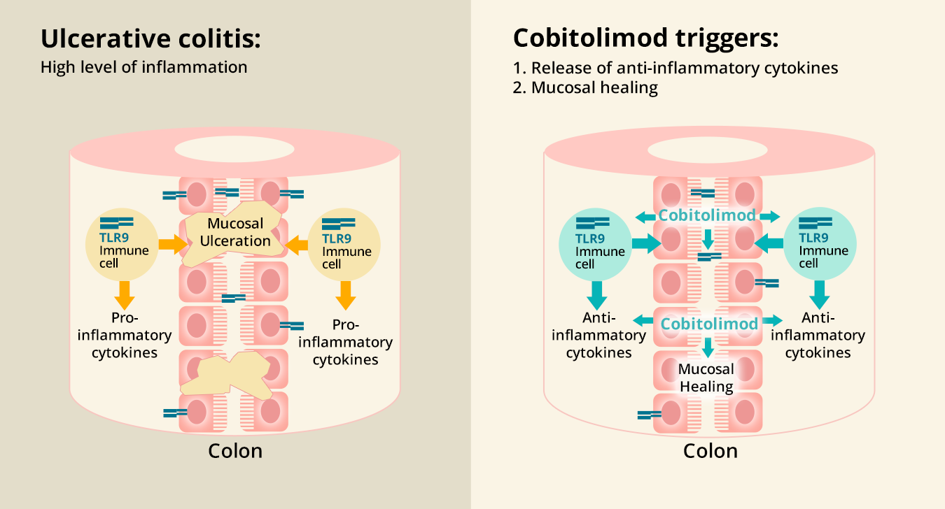 Cobitolimod Treatment Index Pharmaceuticals